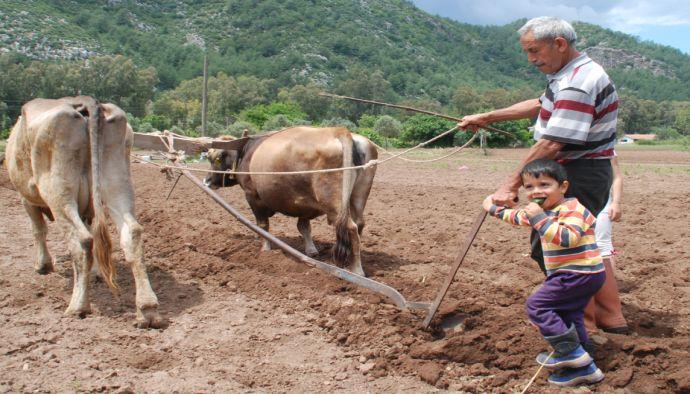 10binlerce Çiftçi Eğitim İçin Başvurdu