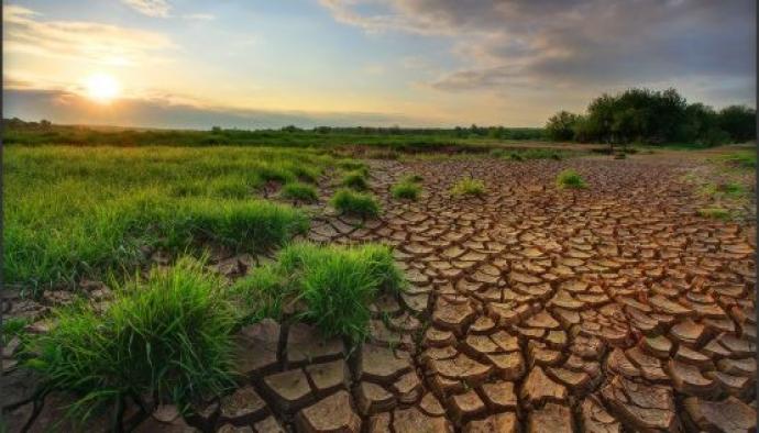 Çiftçiye İklim Değişikliği Reçetesi