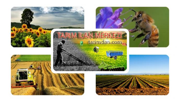 TARIM İLAN MERKEZİ /// TARİMDAN.COM