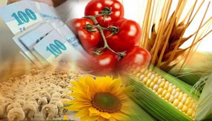 ''Tarım sektörü 2015 yılına zor başladı''