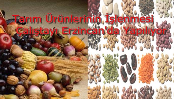 Tarım Ürünlerinin İşlenmesi Çalıştayı Erzincan'da Yapılıyor