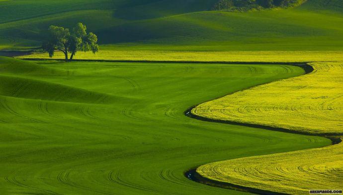 Tarımsal Arazilerin Mülkiyetinin Devrine İlişkin Uygulama Talimatı