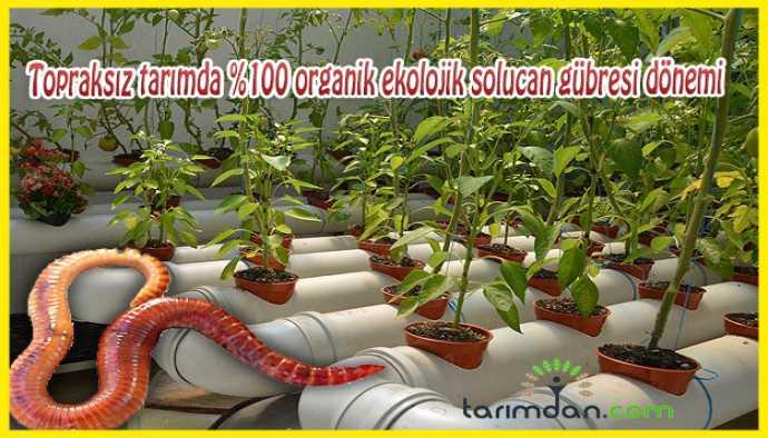 Topraksız tarımda %100 organik ekolojik solucan gübresi
