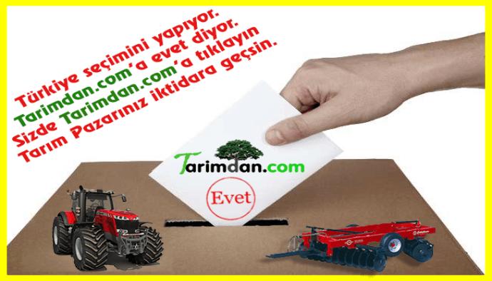 Türkiye seçimini yapıyor.