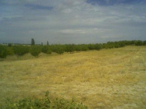 Malatya Durucasuda Çiftlik Arazisi