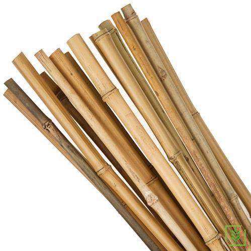 Bambu Bitki Destek Sopası 120 cm 10 Adet