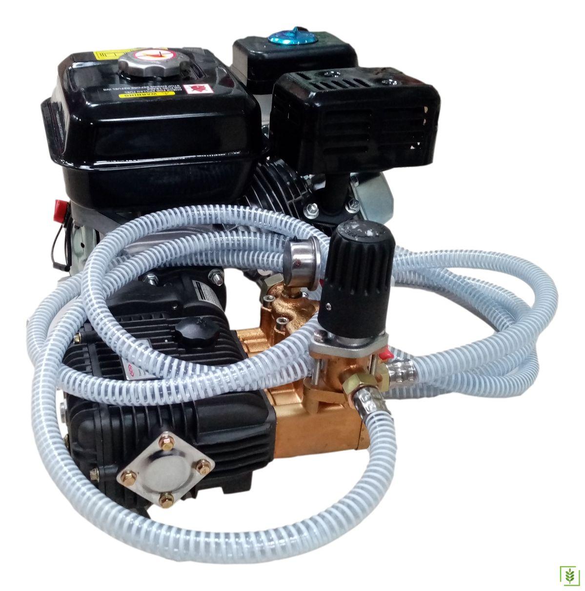 Benzinli Motorlu İlaçlama Makinası FST-22A 6.5 Hp