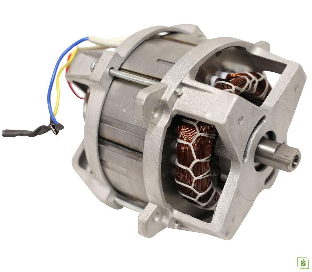 Elektrikli Çim Biçme Makinası Motoru 1000 watt