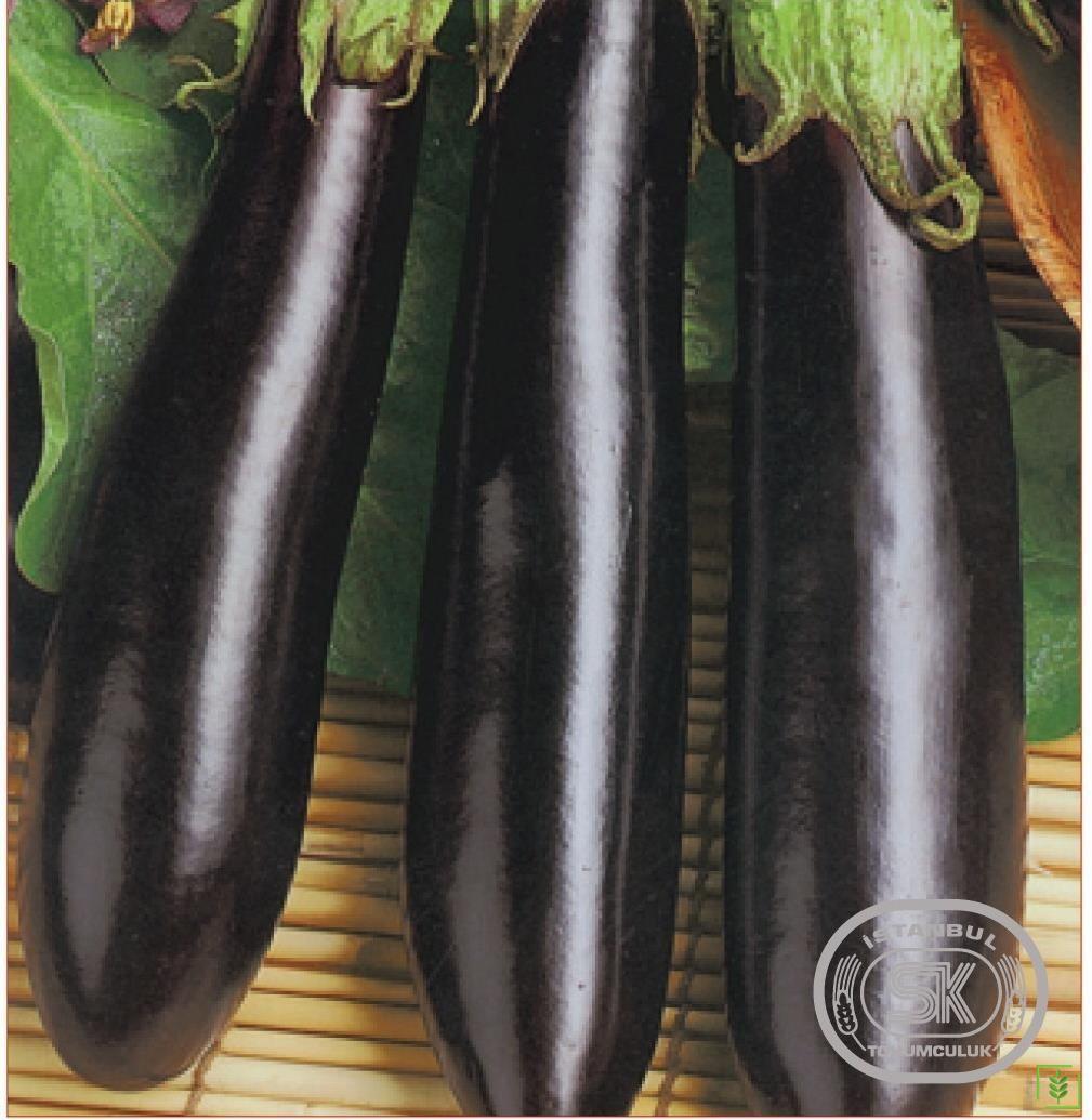 Patlıcan Tohumu Aydın 18 10 gr