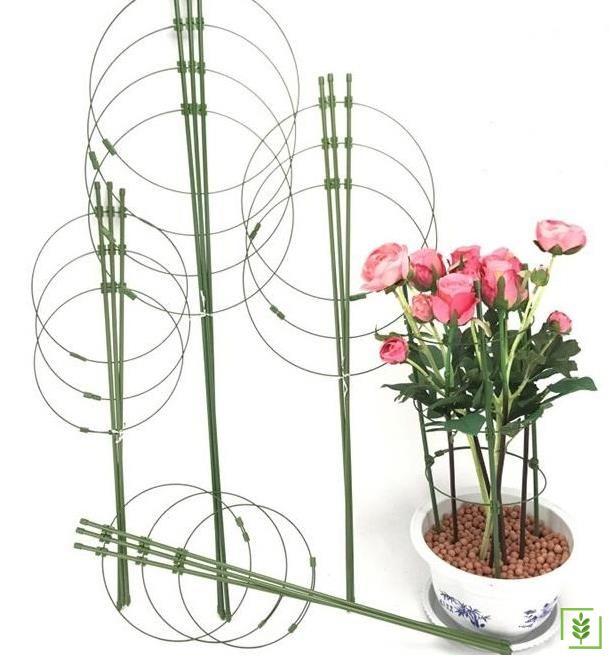 Raco Expert 53698 Bitki Destek Halkası 90 cm