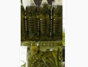 Manisa Akhisar zeytinyağı