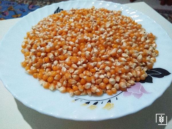patlayan yerli mısır
