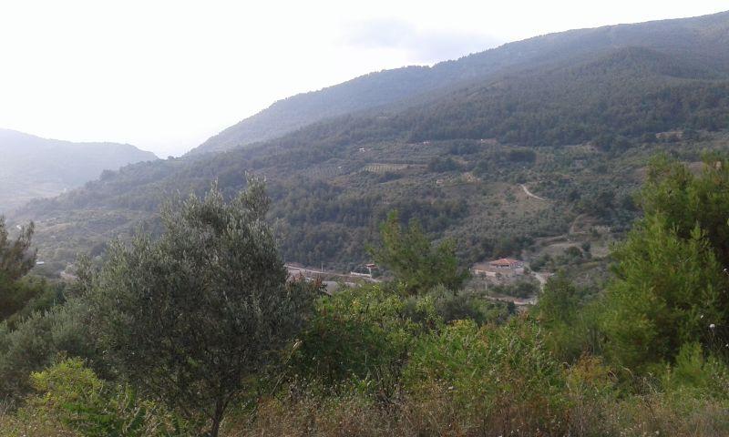 sakarya alifuatpaşa mahallesinde 8206metre kare yatırımlık  mükemmel arazi bu fırsat kaçmaz