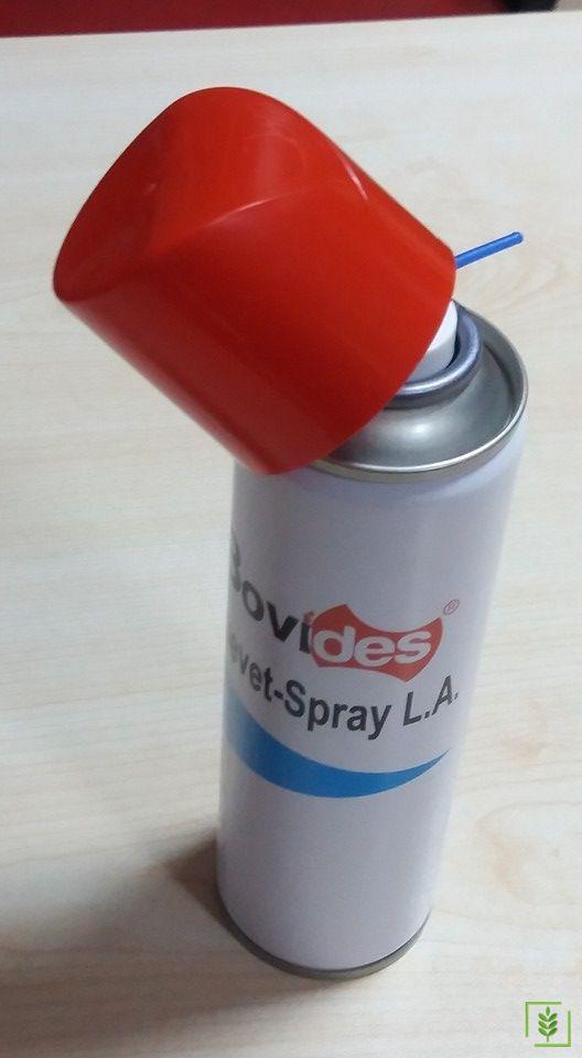 Blue Spray Uzun Etkili (LA)
