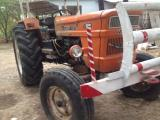 1981 MODEL FİAT 640 HATASIZ FULL EVRAK