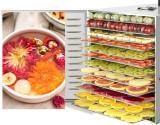 Dalle Büyük Ev Tipi Gıda Meyve Sebze Paslanmaz Kurutma Fırını 12 Tepsi