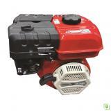 Samsung Power GSP 170F Benzinli Motor 19 mm Kamalı Krank 7 Hp