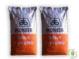 Pioneer D24  Mısır Tohumu 1 Torba