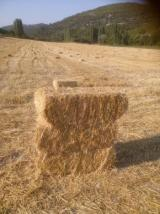 Temiz yeni mahsul buğday saman balyesi
